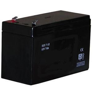 Batteria per allarme12V-7Ah FIAMM