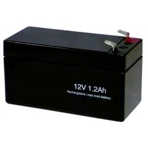 Batteria H1213 FIAMM